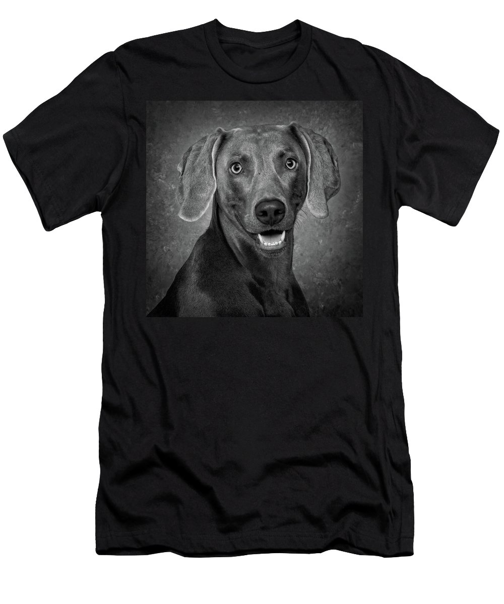 Dog Men's T-Shirt (Athletic Fit) featuring the photograph Weimaraner In Black And White by Greg Mimbs