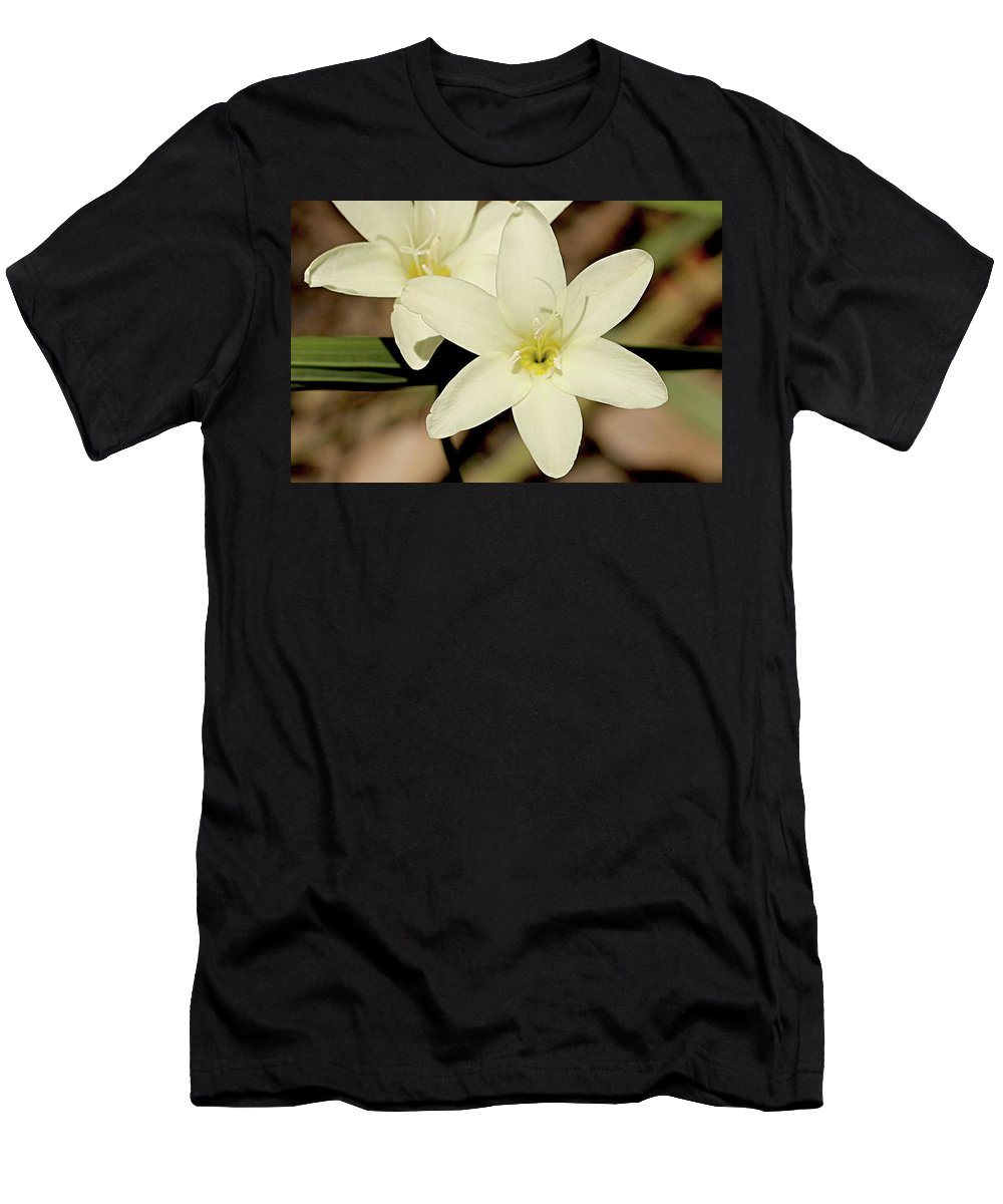 White Orchid Men's T-Shirt (Athletic Fit) featuring the photograph West Australian Wildflowers - Orchid 2 by Carolyn Parker