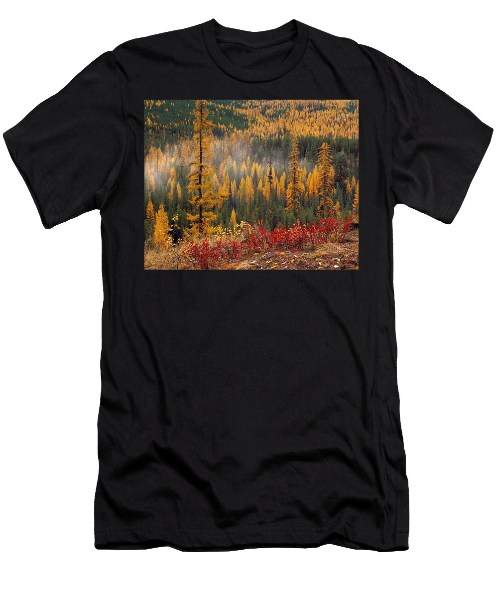 Washington Men's T-Shirt (Athletic Fit) featuring the photograph Western Larch Forest Autumn by Leland D Howard