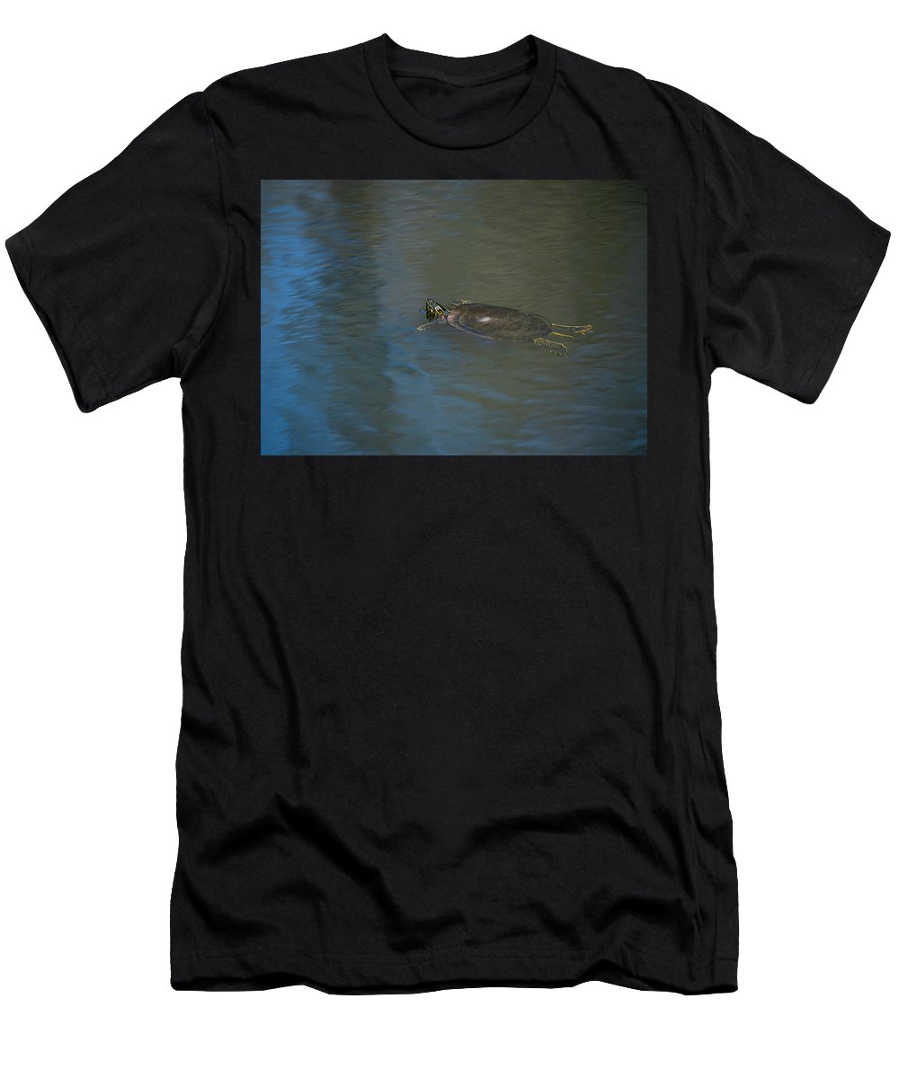 Animals Men's T-Shirt (Athletic Fit) featuring the photograph Western Painted Turtle by Robert Potts