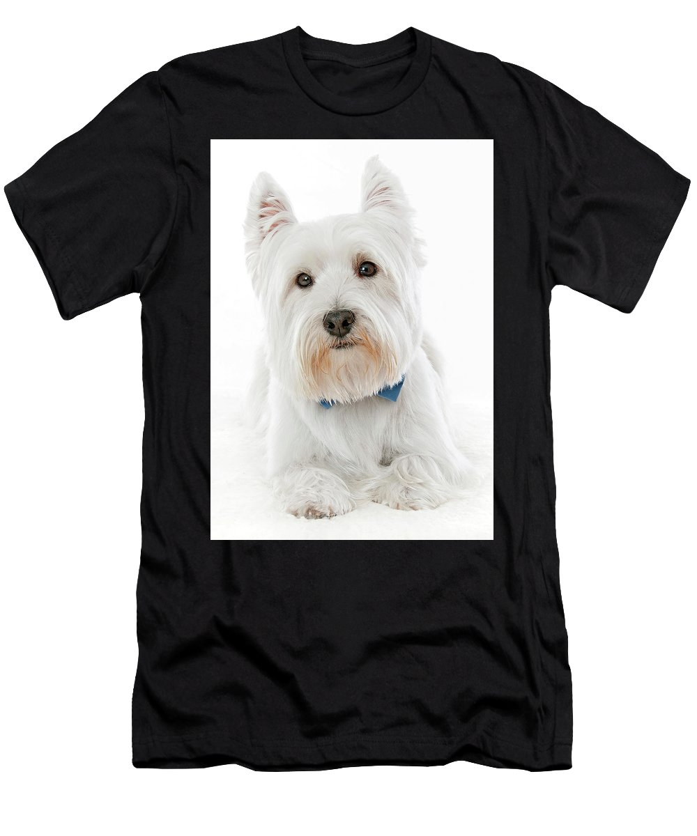 West Highland Terrier Men's T-Shirt (Athletic Fit) featuring the photograph Westie by Hugo Orantes