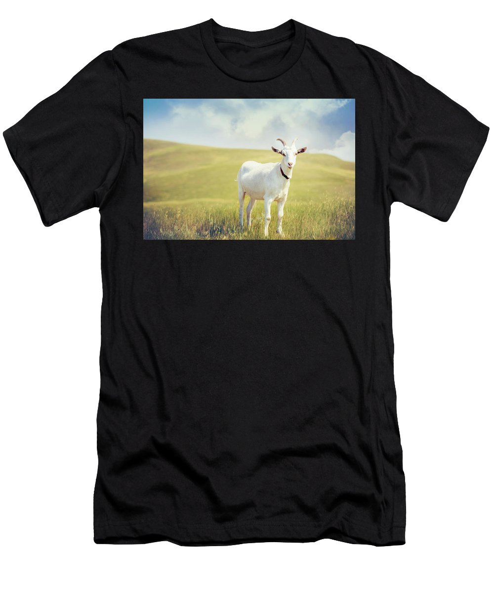 Goat Men's T-Shirt (Athletic Fit) featuring the photograph White Billy Goat by Debi Bishop