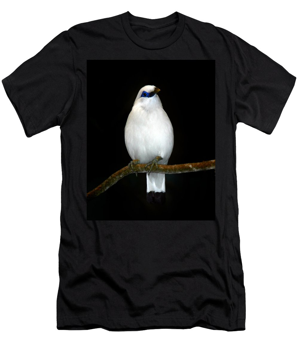 Bird Men's T-Shirt (Athletic Fit) featuring the photograph White Bird by Anthony Jones