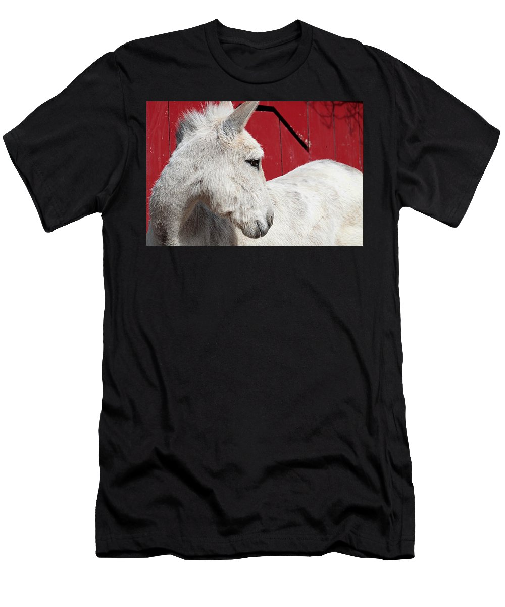 Donkey Men's T-Shirt (Athletic Fit) featuring the photograph White Donkey, Red Barn by Linda Crockett