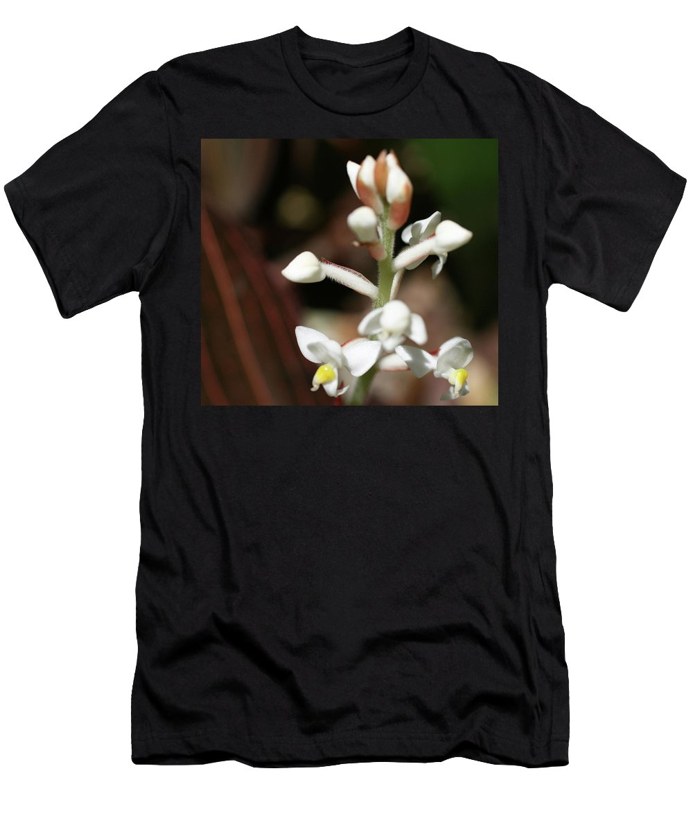 Close-up Photo Photography Flower Plant White Buds Men's T-Shirt (Athletic Fit) featuring the photograph White Flower Buds by Christina Geiger