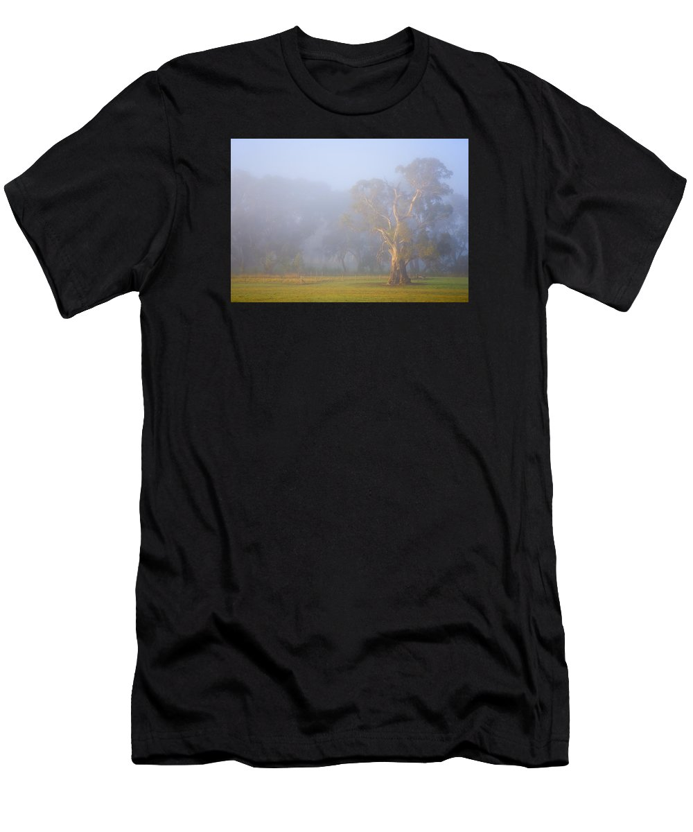 Tree Men's T-Shirt (Athletic Fit) featuring the photograph White Gum Morning by Mike Dawson