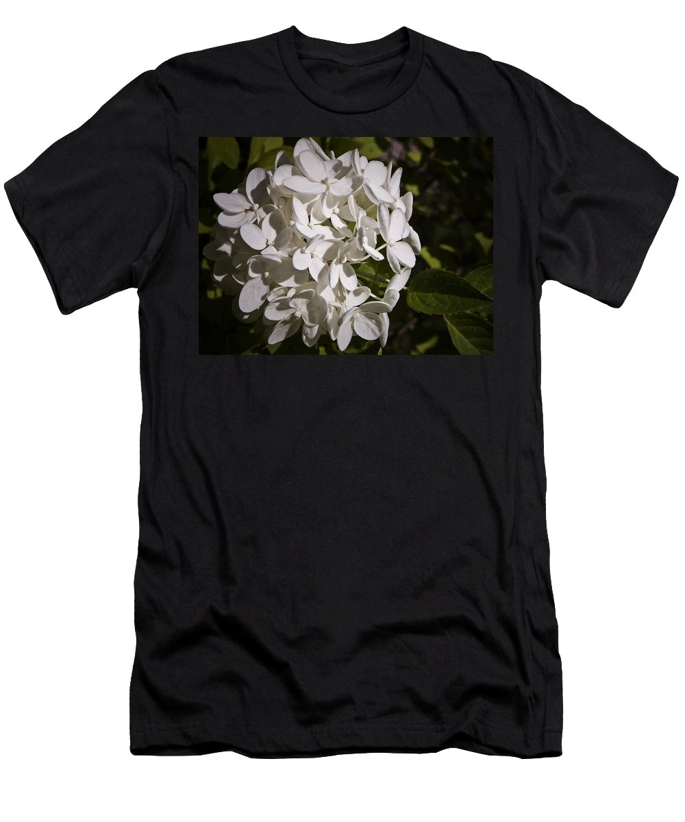 Hydrangea Men's T-Shirt (Athletic Fit) featuring the photograph White Hydrangea Bloom by Teresa Mucha
