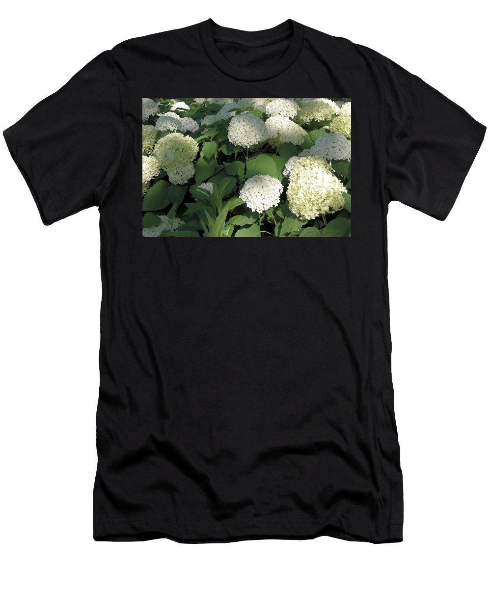 Hydrangea Men's T-Shirt (Athletic Fit) featuring the photograph White Hydrangea Bush by Nancy Aurand-Humpf
