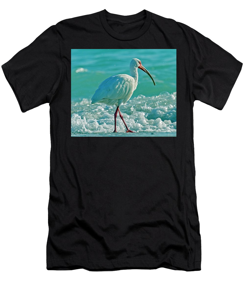 Ibis T-Shirt featuring the photograph White Ibis Paradise by Betsy Knapp