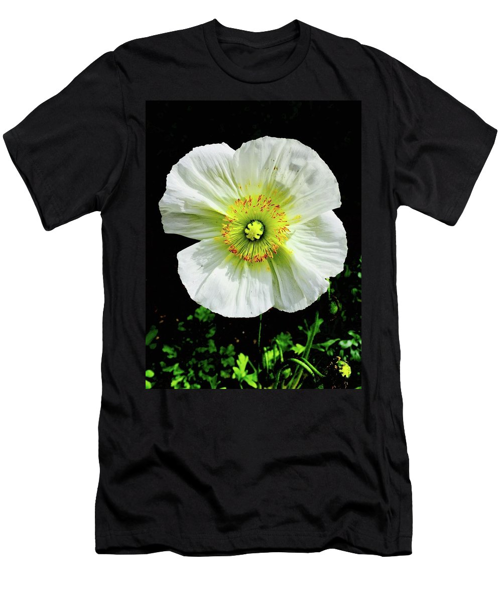 White Iceland Poppy Flower Bright Flora Temecula California Papaver Nudicaule Croceum Men's T-Shirt (Athletic Fit) featuring the photograph White Iceland Poppy by Russell Keating