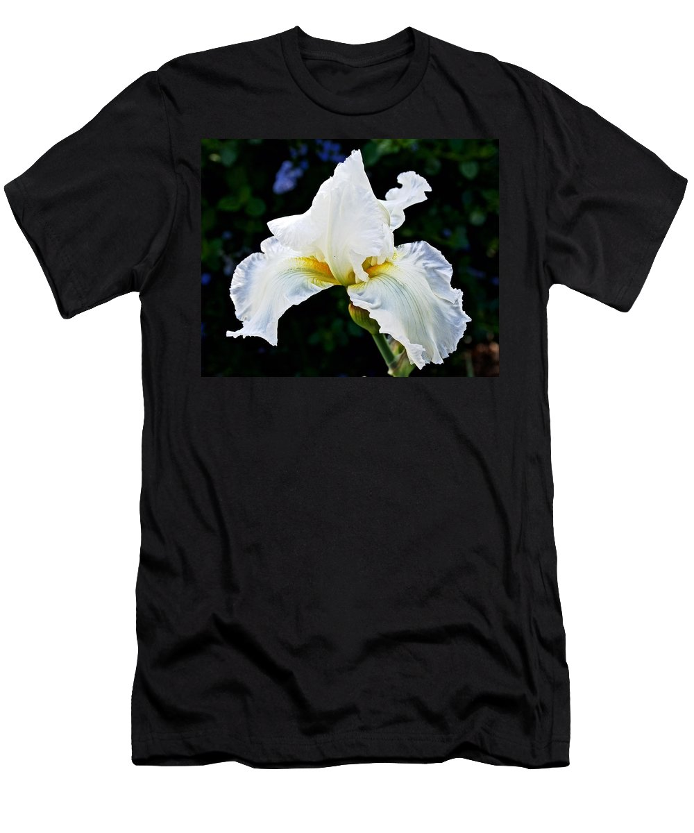 White Iris At Pilgrim Place In Claremont Men's T-Shirt (Athletic Fit) featuring the photograph White Iris At Pilgrim Place In Claremont-california by Ruth Hager