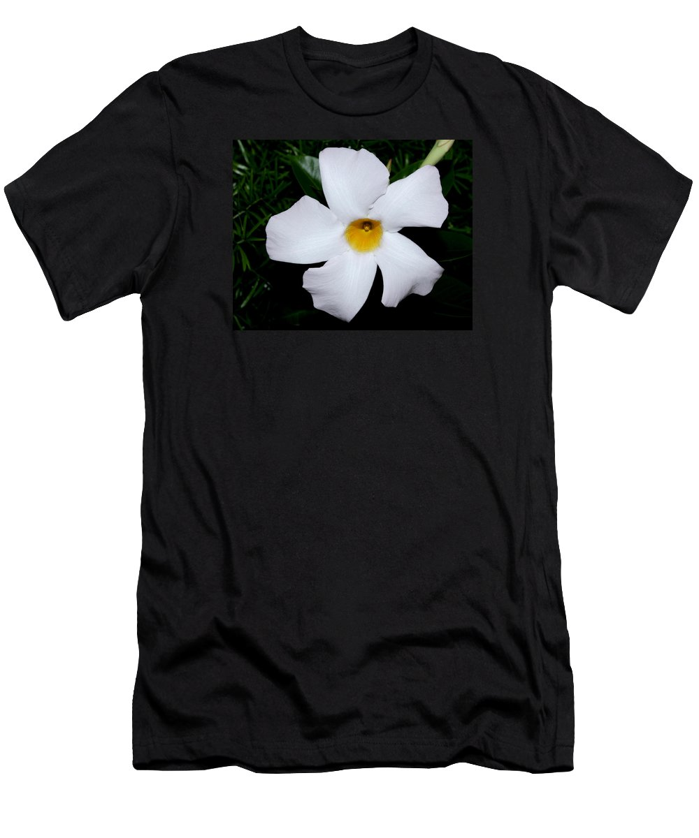 Nature Men's T-Shirt (Athletic Fit) featuring the photograph White Mandevilla by Robert Morin