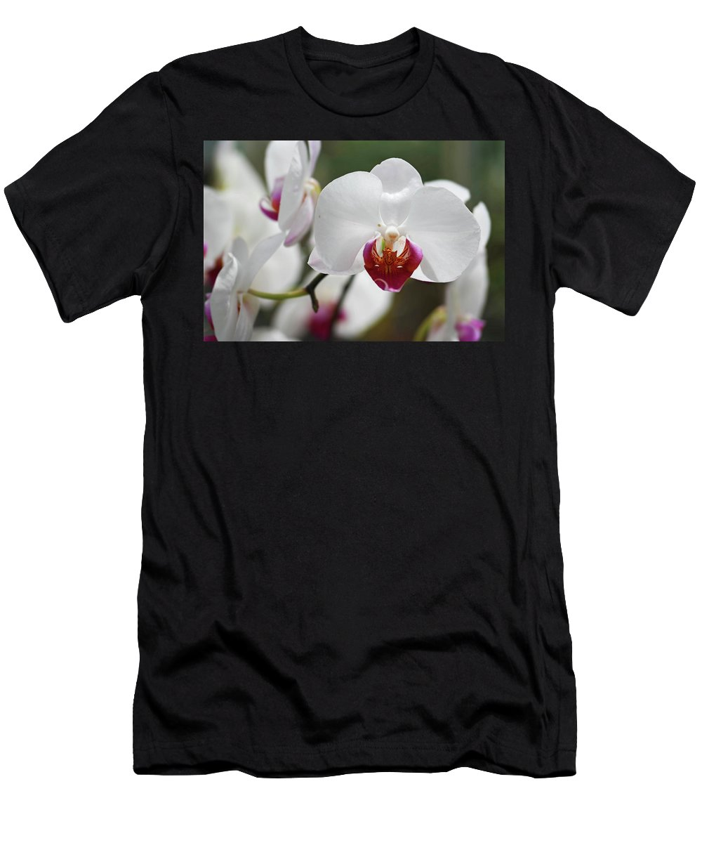Orchids Men's T-Shirt (Athletic Fit) featuring the photograph White Orchids 2 by Nancy Aurand-Humpf