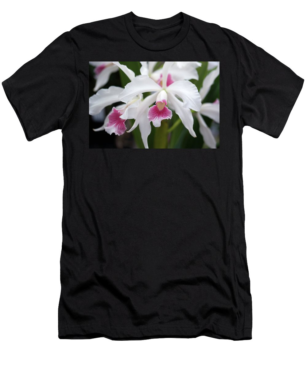 Orchids Men's T-Shirt (Athletic Fit) featuring the photograph White Orchids by Nancy Aurand-Humpf