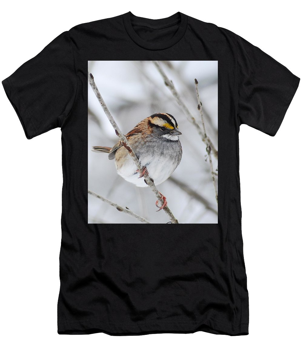 White-throated Sparrow Men's T-Shirt (Athletic Fit) featuring the photograph White Throated Sparrow by Michael Peychich