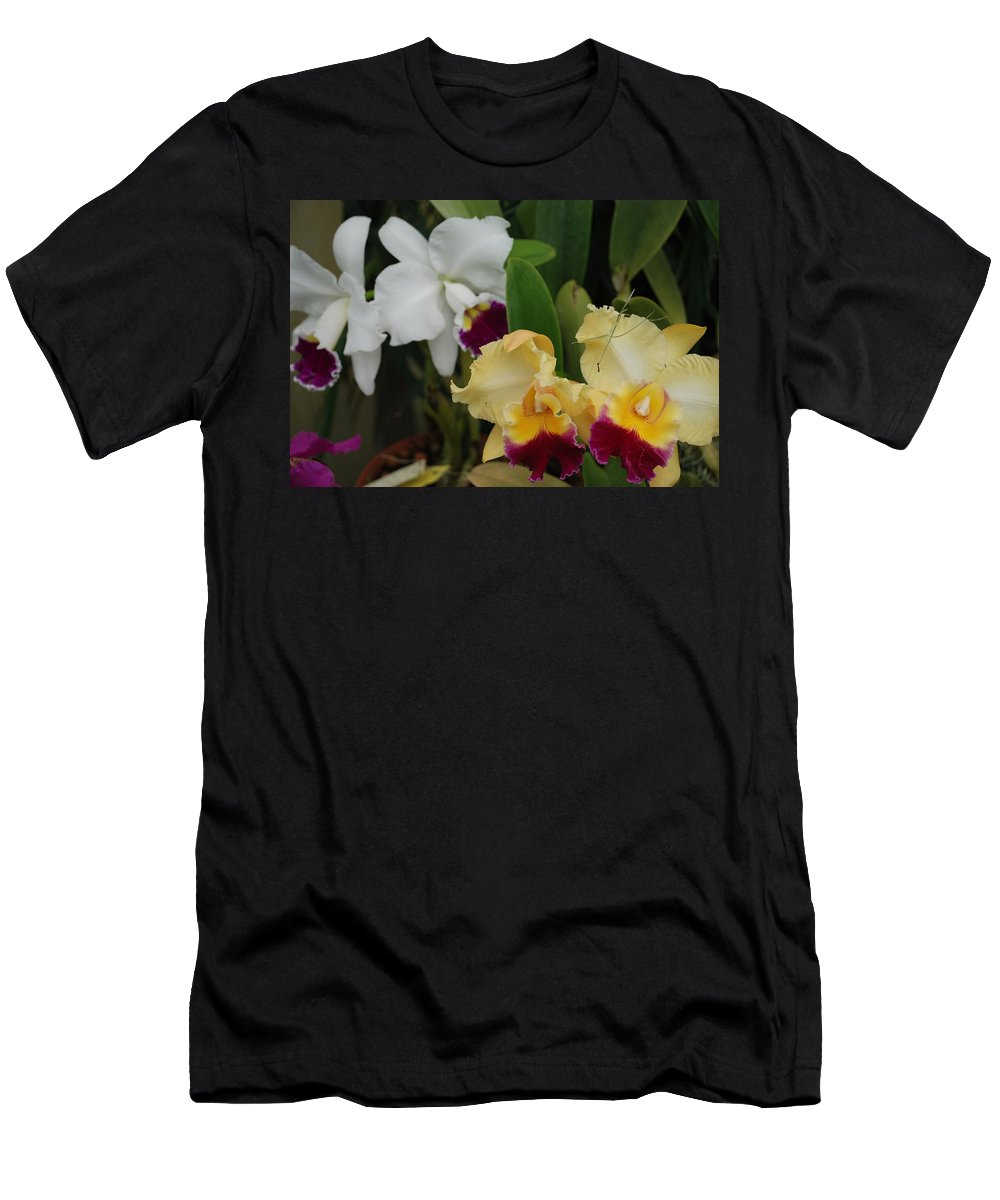 Macro Men's T-Shirt (Athletic Fit) featuring the photograph White Yellow Orchids by Rob Hans