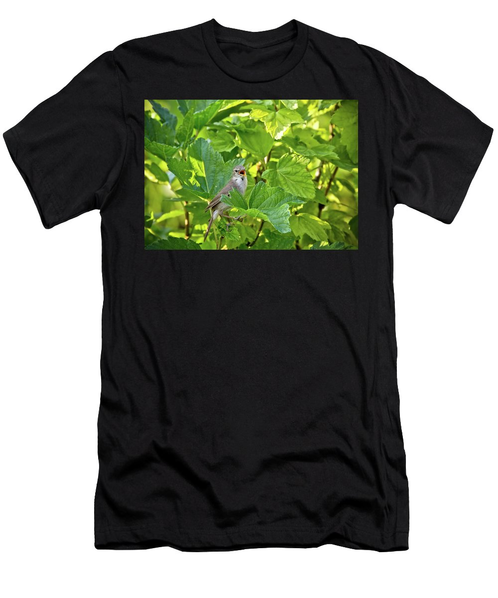 Bird Men's T-Shirt (Athletic Fit) featuring the photograph Wild Bird In A Currant Bush. by Oksana Ariskina