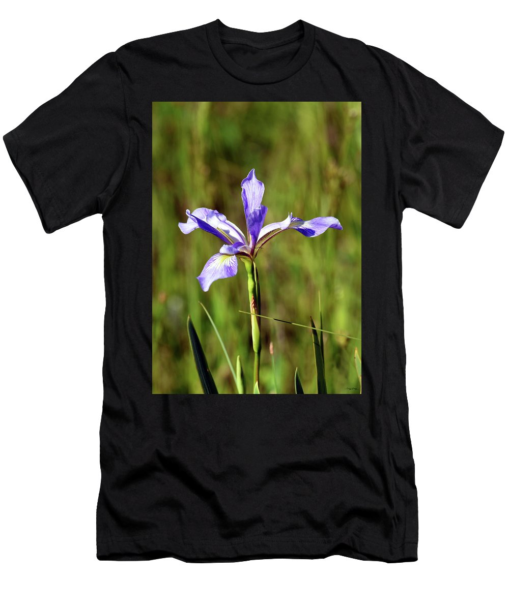 Blue Flag Iris Men's T-Shirt (Athletic Fit) featuring the photograph Wild Blue Flag Iris by Sally Sperry