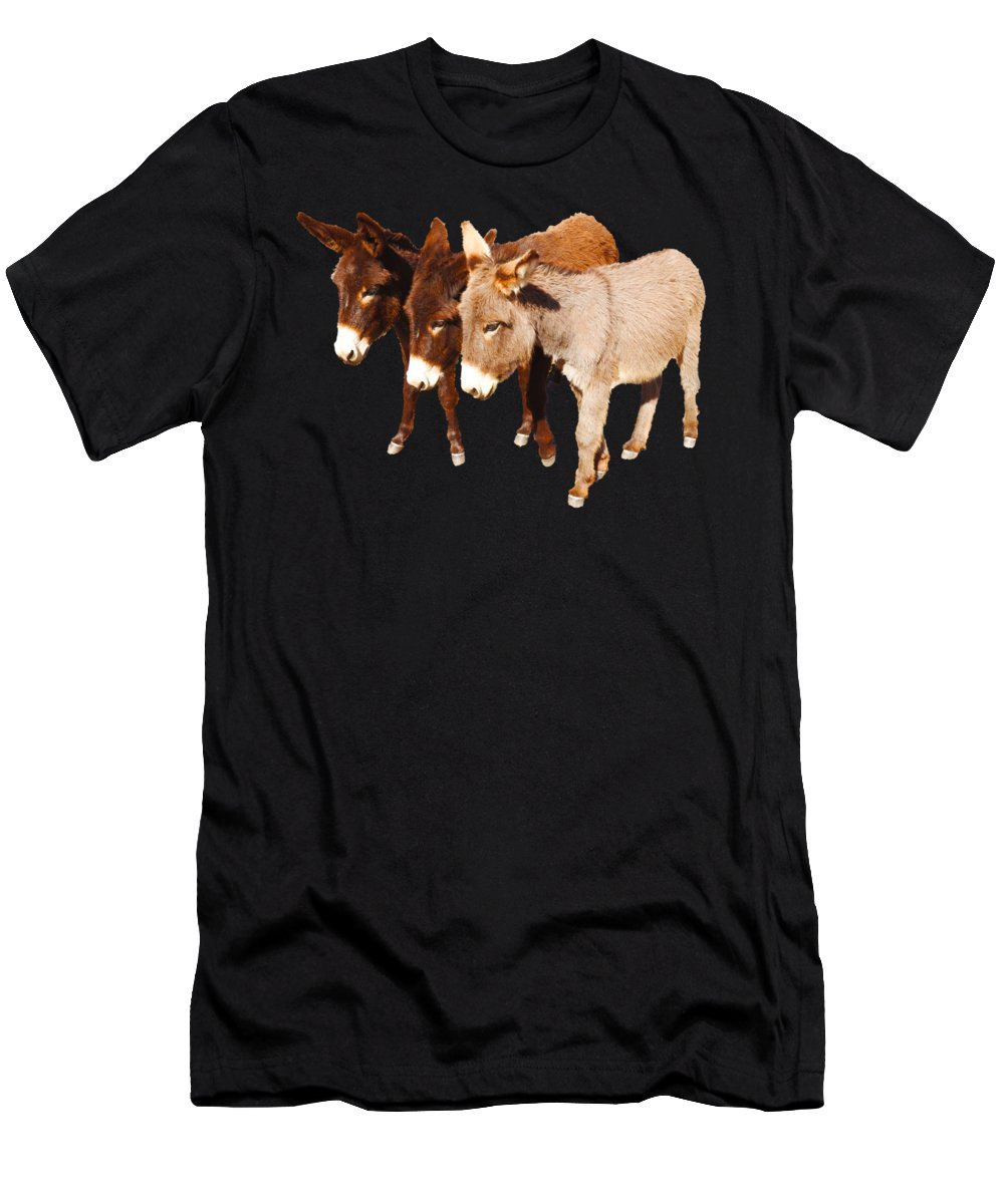 Donkey Men's T-Shirt (Athletic Fit) featuring the digital art Wild Burro Buddies by Sandra O'Toole
