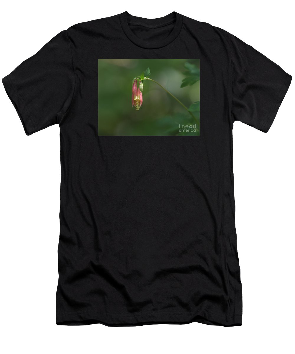 Columbine Men's T-Shirt (Athletic Fit) featuring the photograph Wild Columbine by Charles Owens