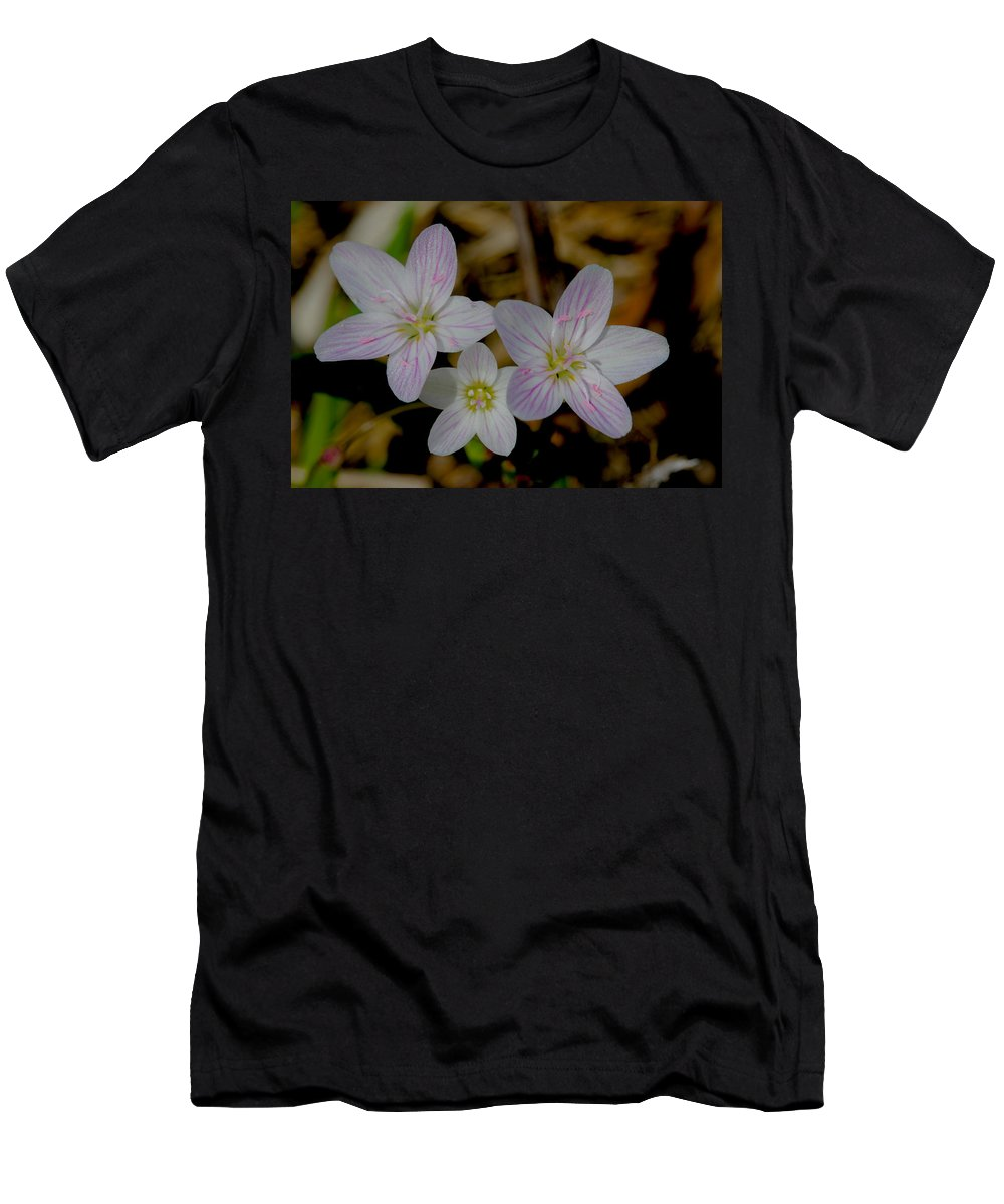 Spring Flower Men's T-Shirt (Athletic Fit) featuring the photograph Wild Flower by Jose Canales