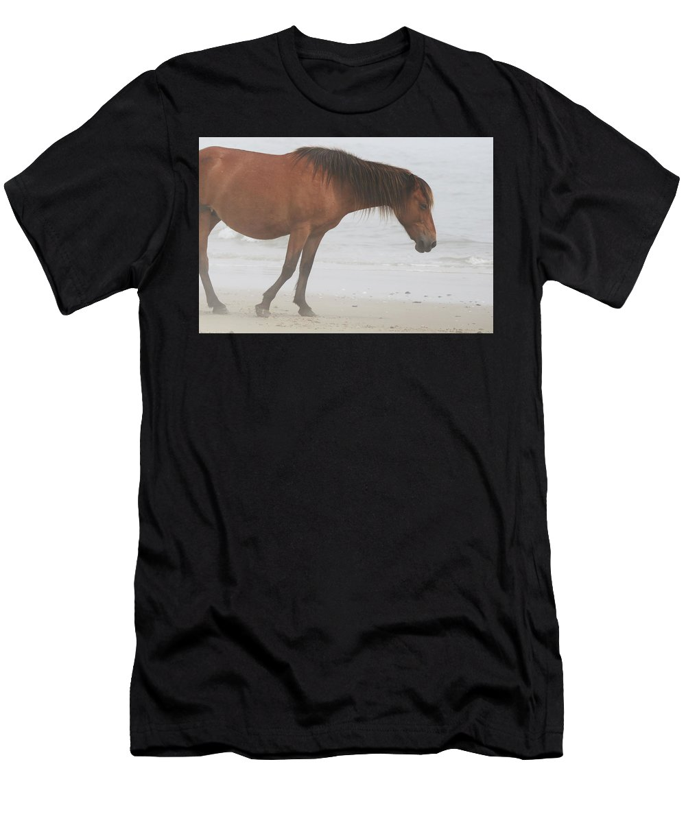 Wild Horses Men's T-Shirt (Athletic Fit) featuring the photograph Wild Horses On The Beach 2 by David Stasiak