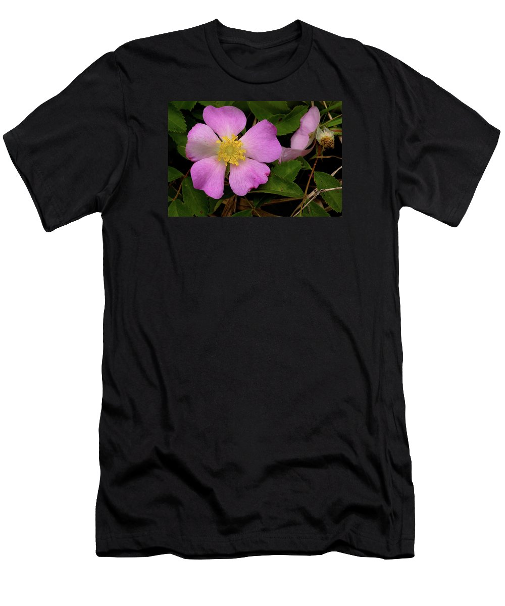 Rose Men's T-Shirt (Athletic Fit) featuring the photograph Wild Rose by Grant Groberg