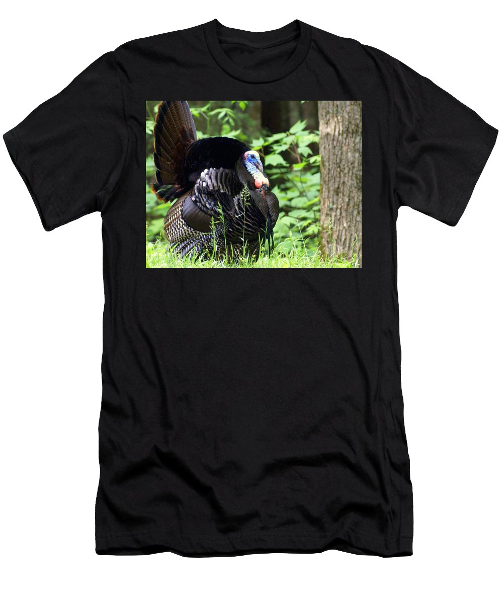 Wild Turkey Men's T-Shirt (Athletic Fit) featuring the photograph Wild Turkey 2 by Marty Koch