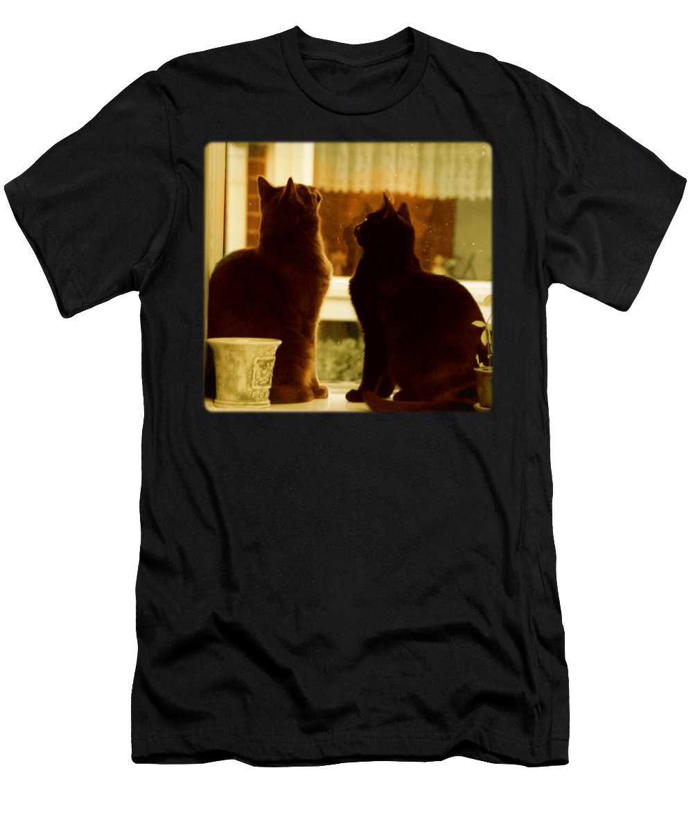 Cat Men's T-Shirt (Athletic Fit) featuring the photograph Window Cats by Katherine Nutt