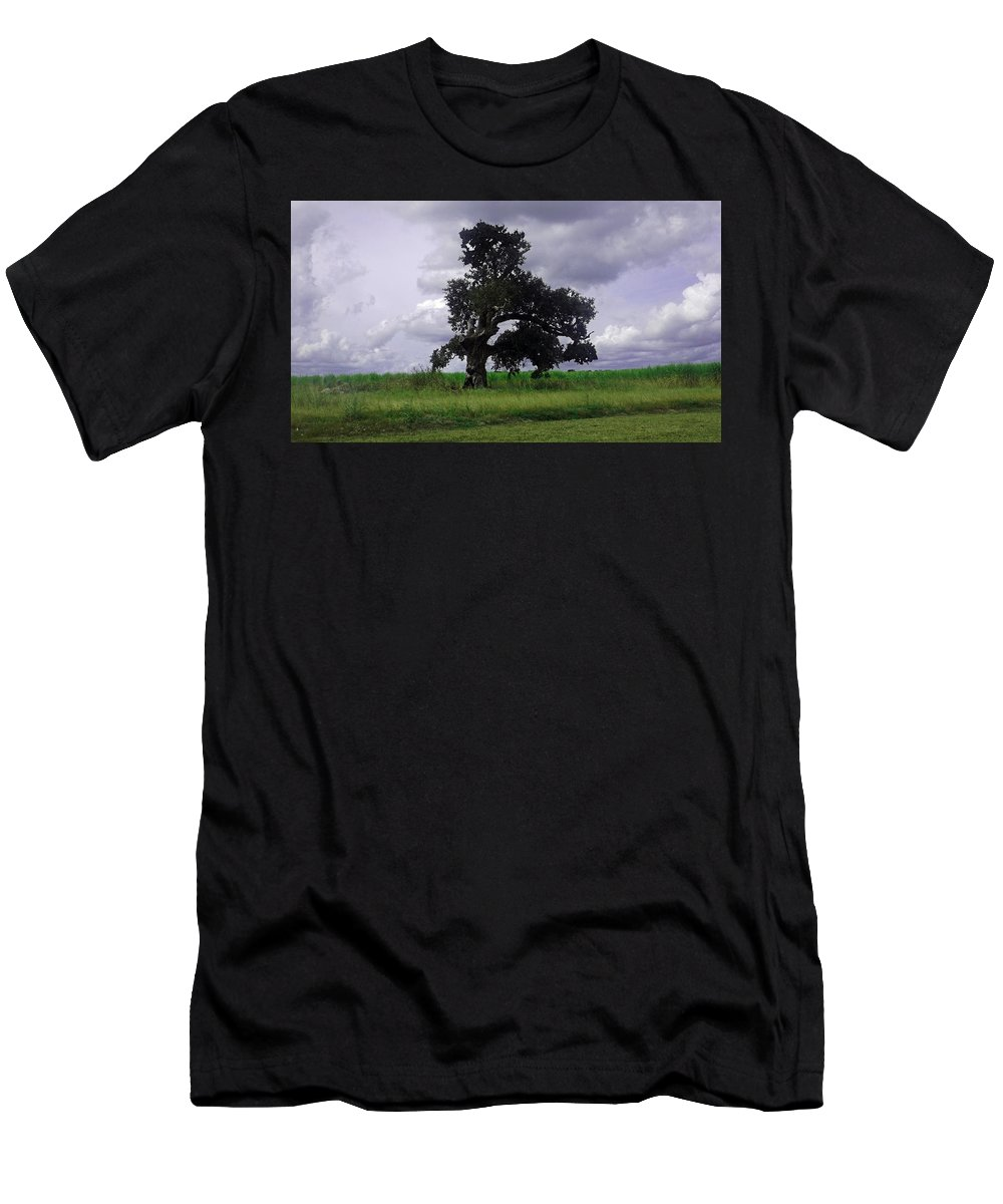 Louisiana Men's T-Shirt (Athletic Fit) featuring the photograph Windswept Tree by Leigh Ann Raab