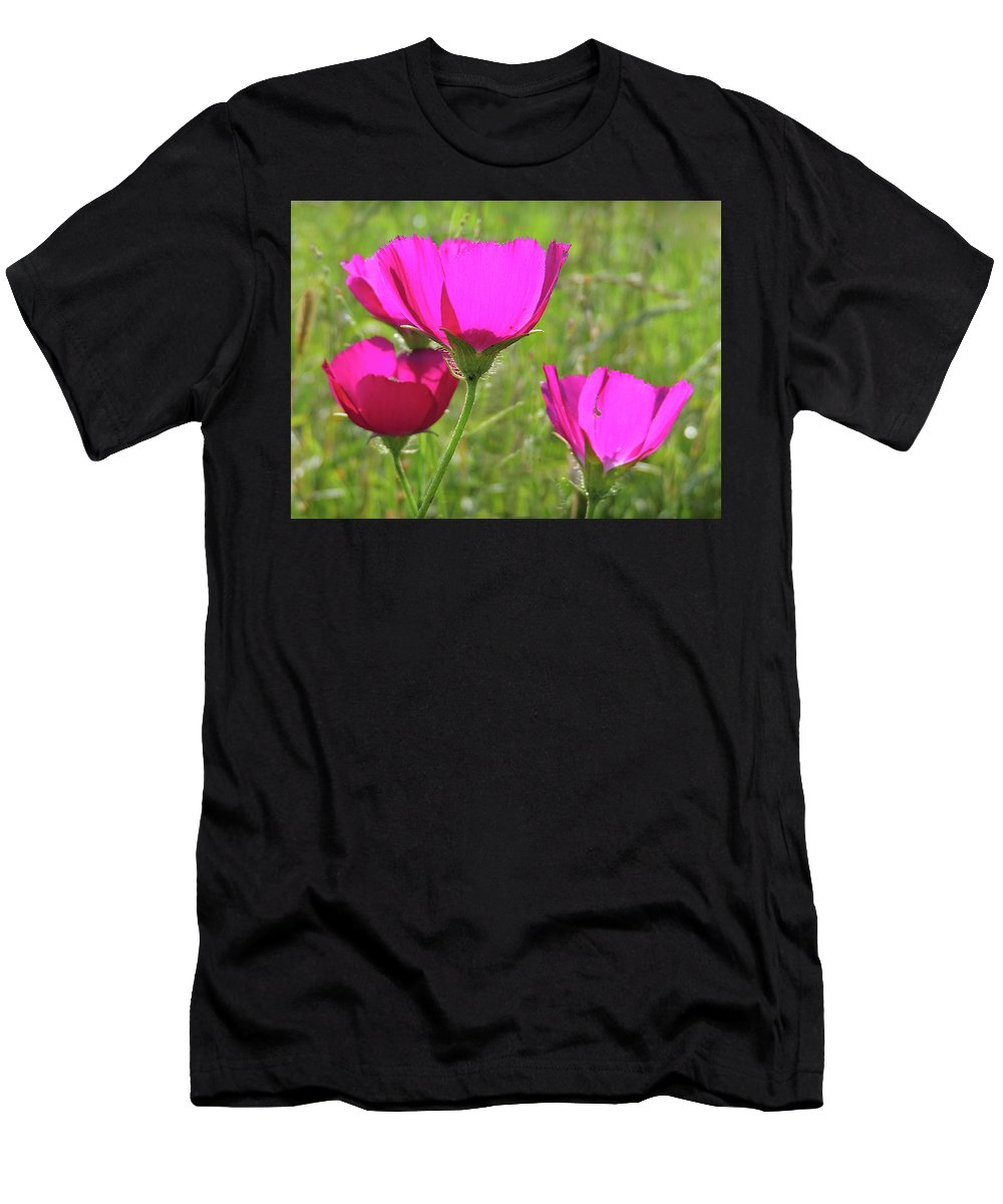 Flower Men's T-Shirt (Athletic Fit) featuring the photograph Winecup Flowers In Sunlight by Lindy Pollard