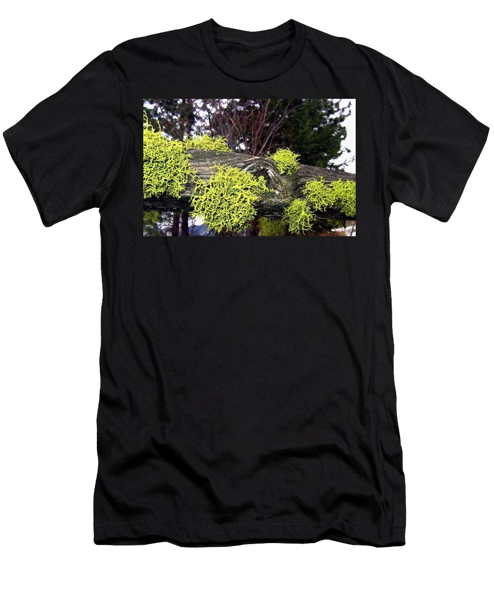 Winter Men's T-Shirt (Athletic Fit) featuring the photograph Winter Moss by Will Borden