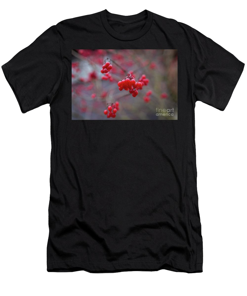 Winterberries Men's T-Shirt (Athletic Fit) featuring the photograph Winterberries by Eva Lechner