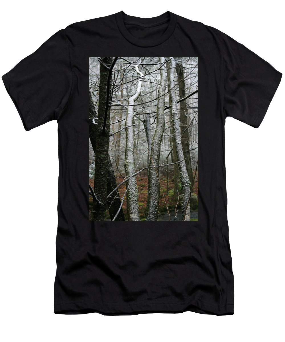 Tree Woods Forest Wood Snow White Green Winter Season Nature Cold Men's T-Shirt (Athletic Fit) featuring the photograph Wintery Day by Andrei Shliakhau