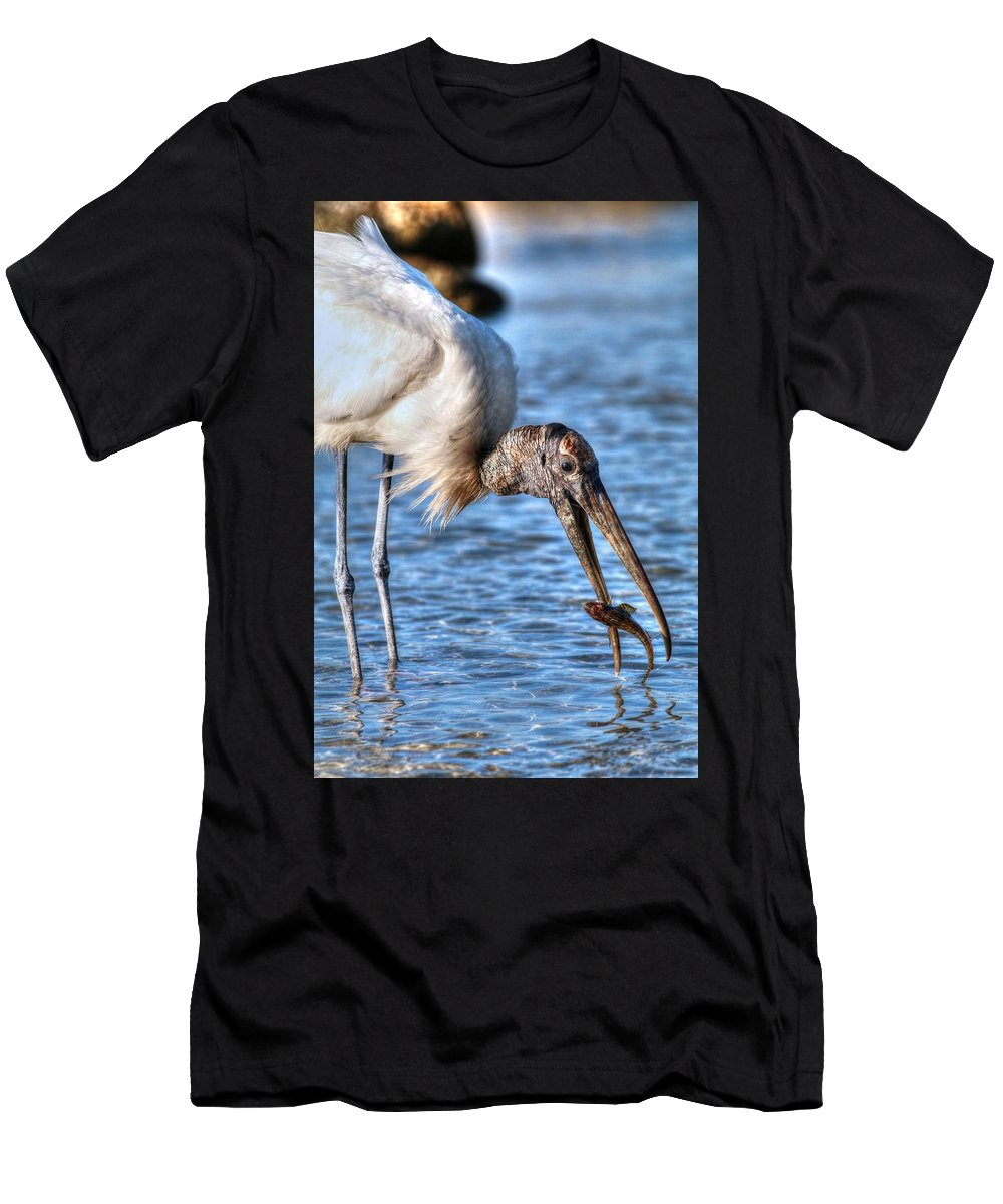 Wood Stork Men's T-Shirt (Athletic Fit) featuring the photograph Wood Storks Breakfast Lunch And Dinner by Carol Montoya