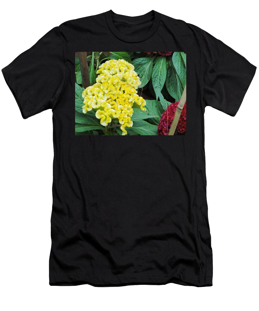 Men's T-Shirt (Athletic Fit) featuring the photograph Yellow Cockscomb by Usha Shantharam