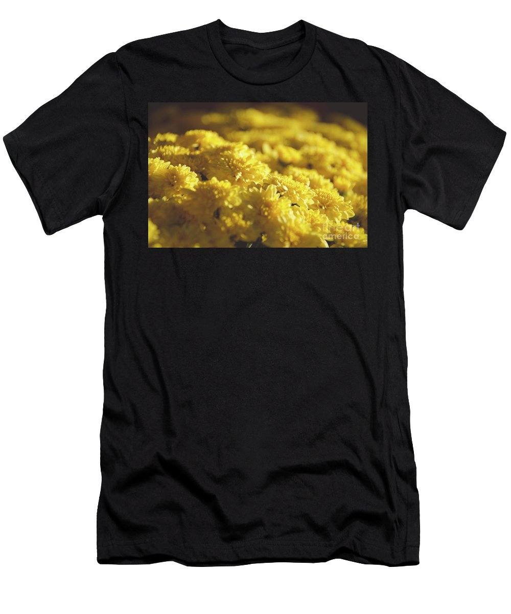 Plant Men's T-Shirt (Athletic Fit) featuring the photograph Yellow Daisies by Andrea Anderegg