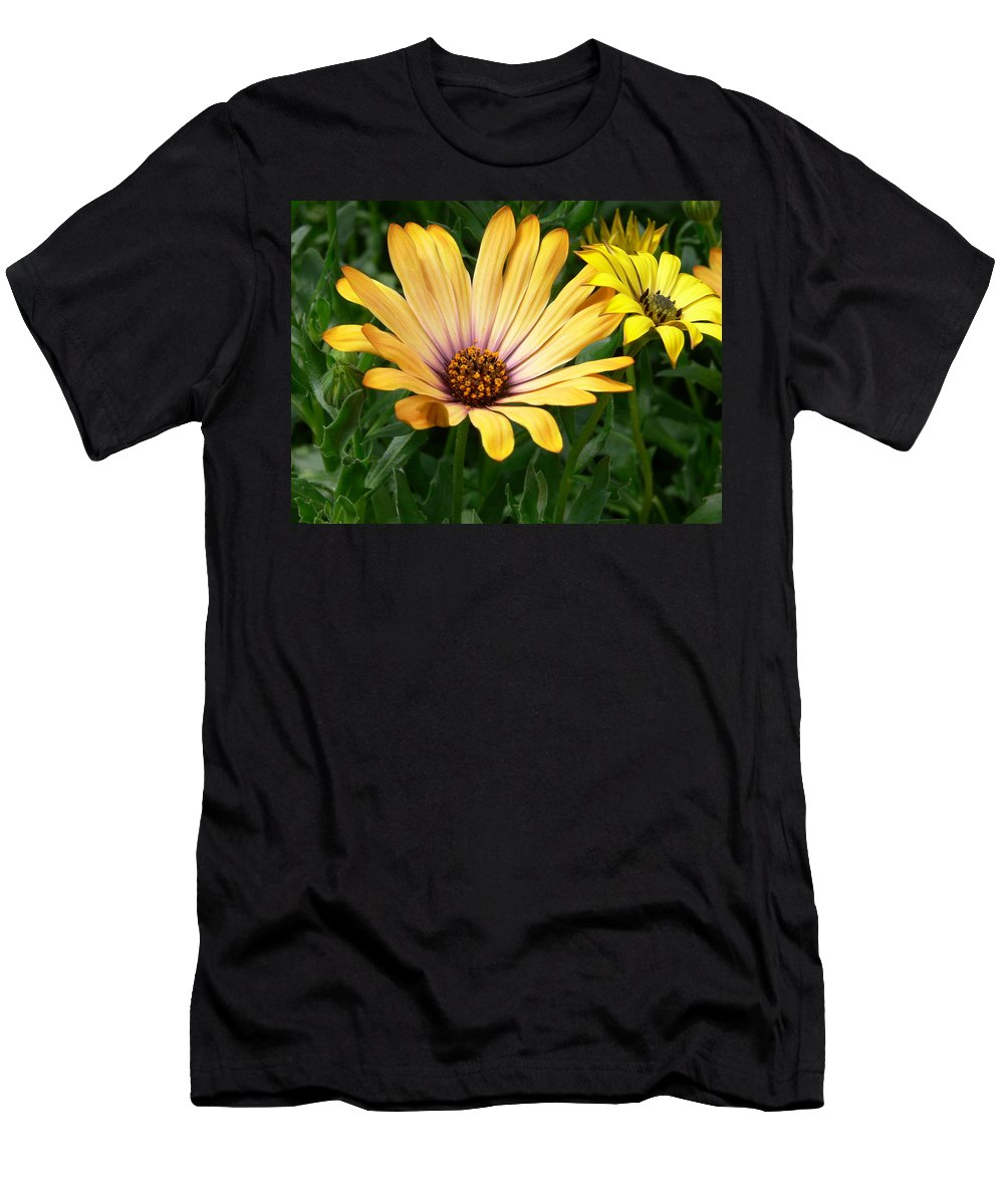 Daisy Men's T-Shirt (Athletic Fit) featuring the photograph Yellow Days by Nancie DeMellia