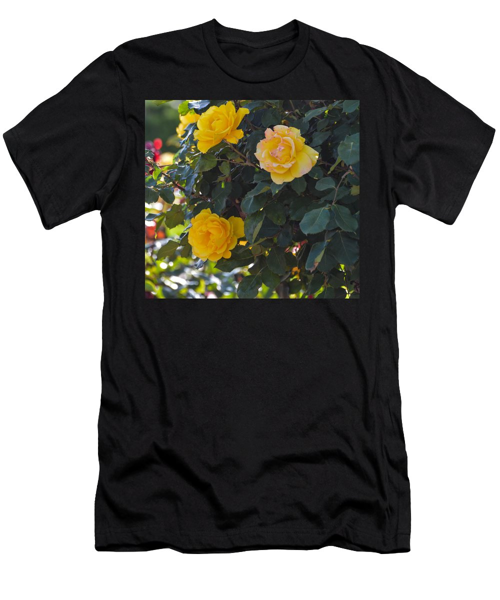 Yellow Men's T-Shirt (Athletic Fit) featuring the photograph Yellow Daze by Miranda Strapason