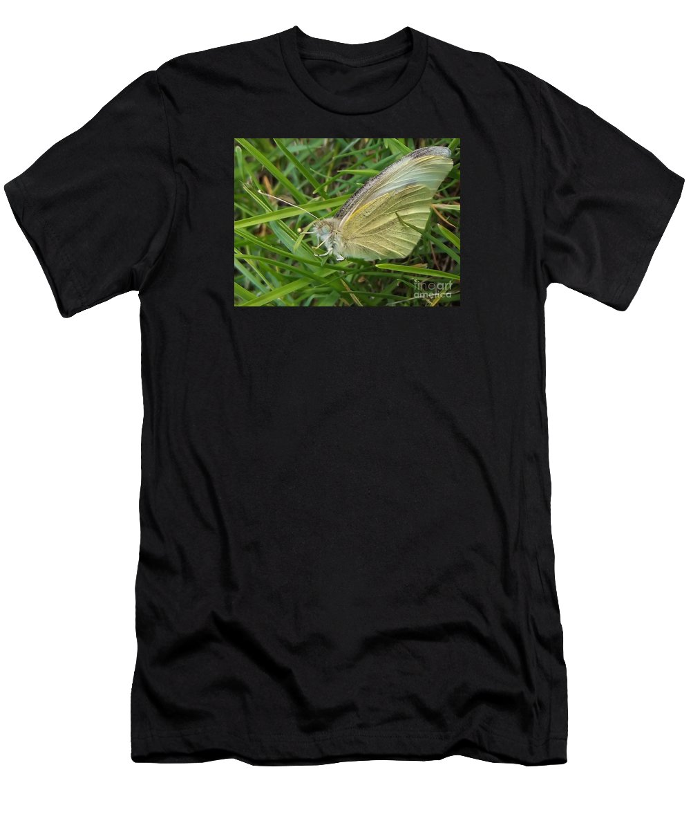 Butterfly Men's T-Shirt (Athletic Fit) featuring the photograph Yellow Fringed Sulphur Butterfly In Grass Blades Image No 1 Indiana by Rory Cubel