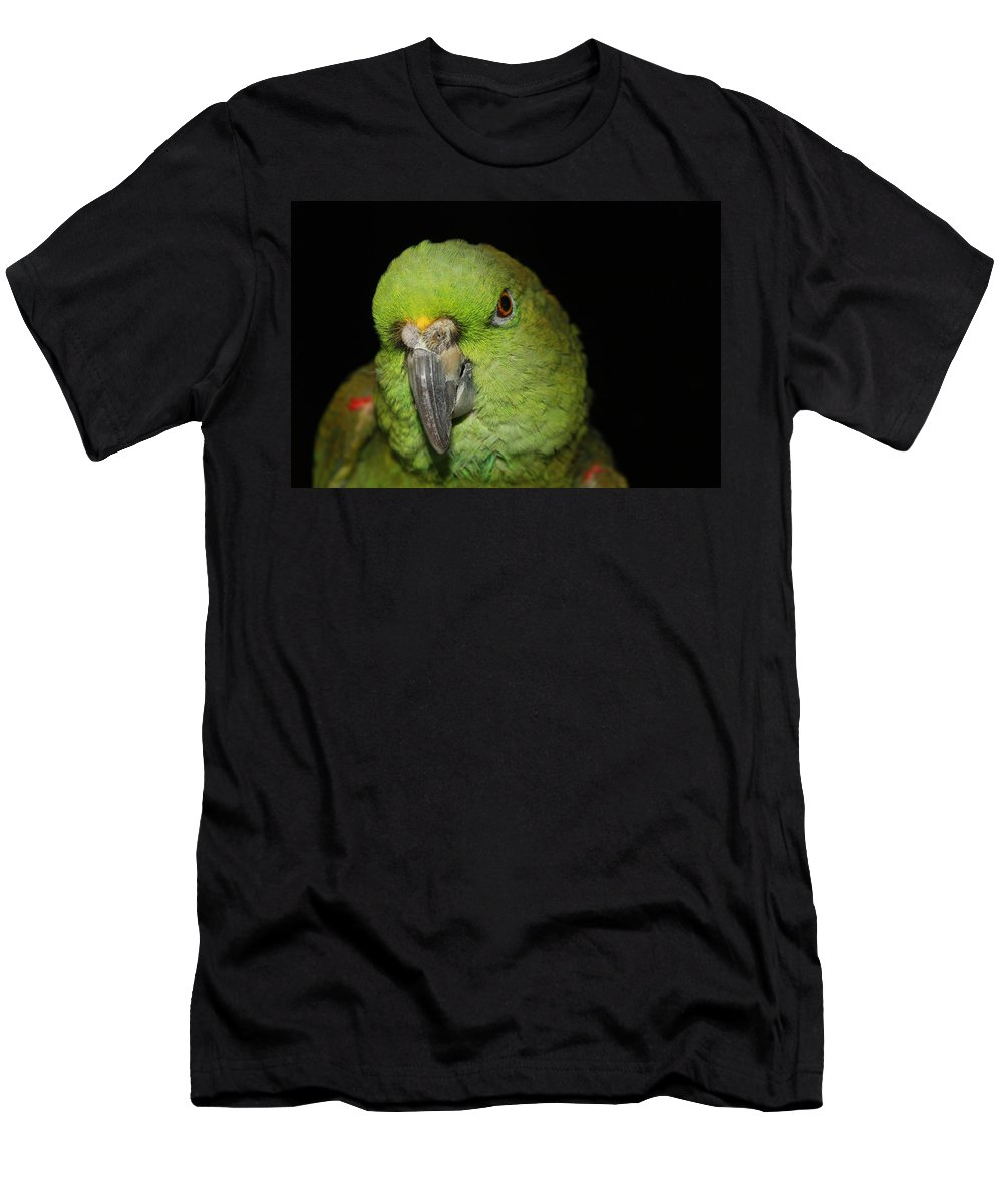 Yellow Men's T-Shirt (Athletic Fit) featuring the photograph Yellow-naped Amazon Parrot by Alexander Butler