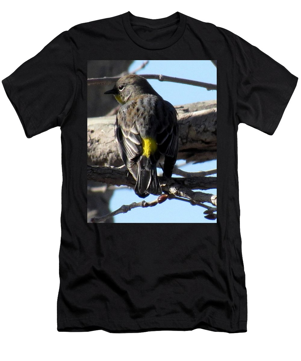 Yellow Rumped Warbler California Song Birds California Bird Species Ornithology North American Avian Diversity California Biodiversity Life On Earth Small Yellow And Gray Bird Men's T-Shirt (Athletic Fit) featuring the photograph Yellow Rumped Warbler by Joshua Bales