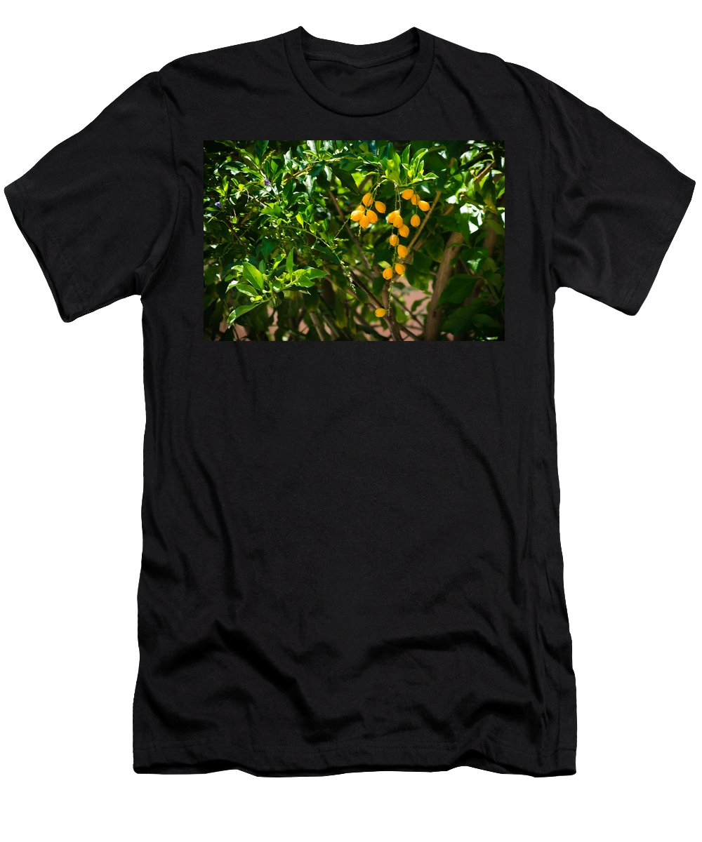 Seeds Men's T-Shirt (Athletic Fit) featuring the photograph Yellow Seeds by Totto Ponce