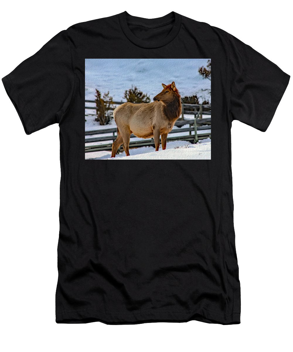 Elk Men's T-Shirt (Athletic Fit) featuring the photograph Yellowstone Elk by Bill And Deb Hayes