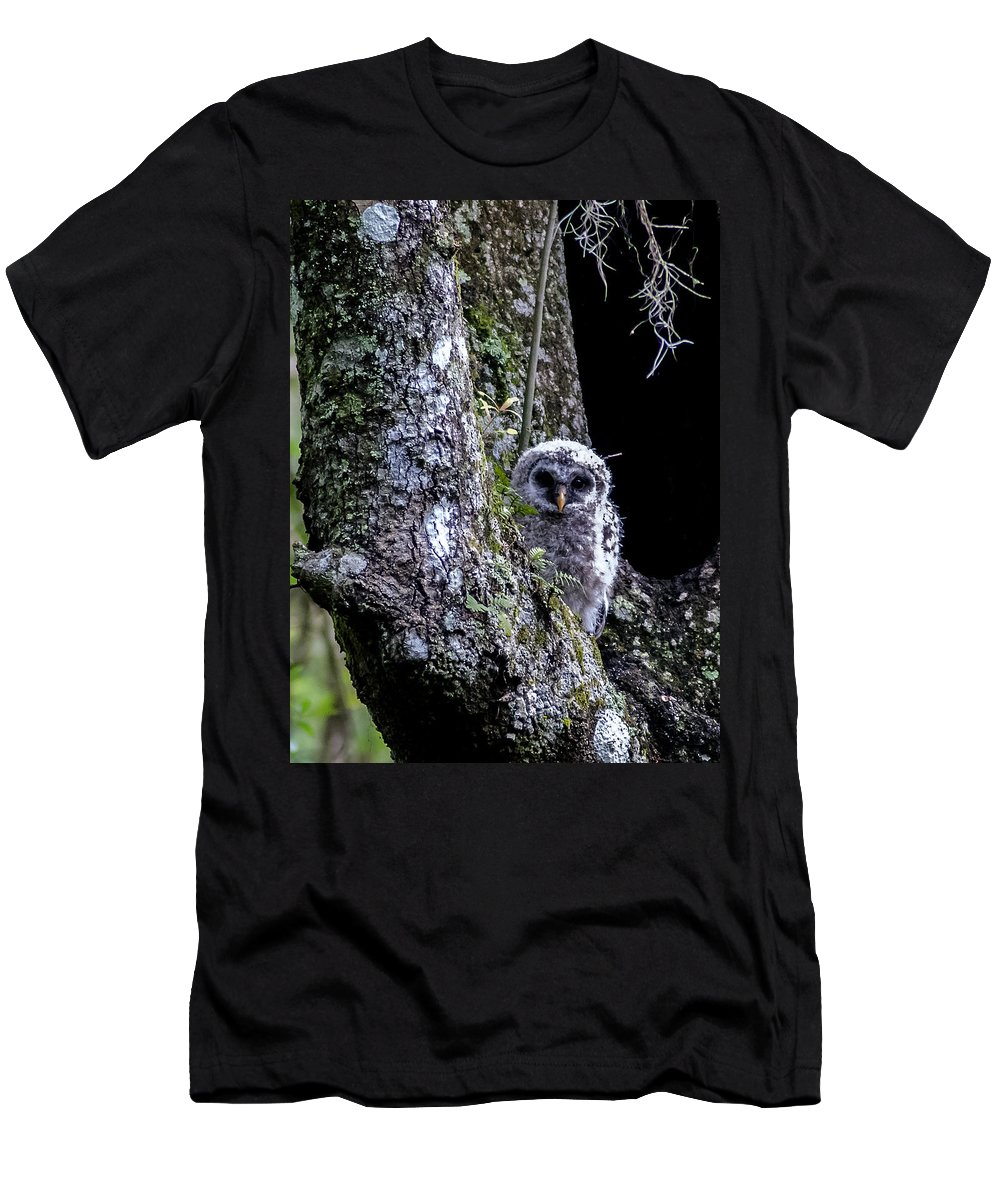 Barred Owl Men's T-Shirt (Athletic Fit) featuring the photograph You Guys Still Here? by Norman Johnson
