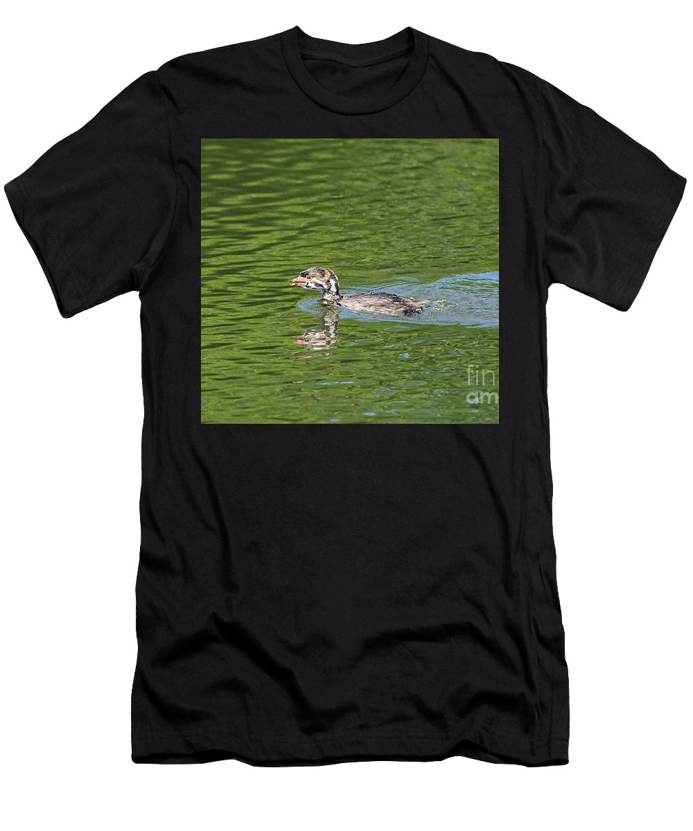 Animal Men's T-Shirt (Athletic Fit) featuring the photograph Young Grebe by Marv Vandehey