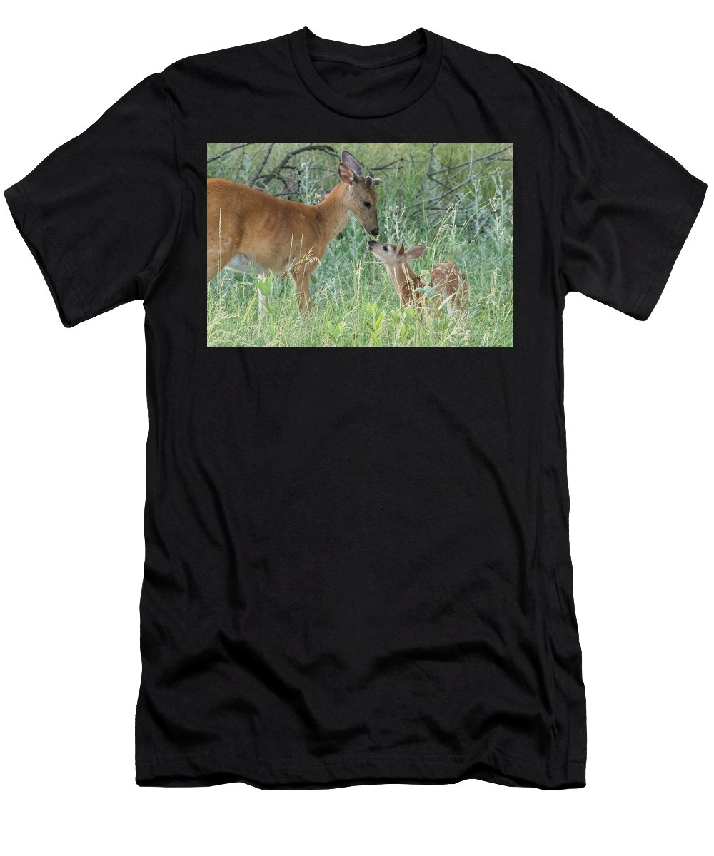 Deer Men's T-Shirt (Athletic Fit) featuring the photograph Young White-tailed Deer Say Hello by Tony Hake