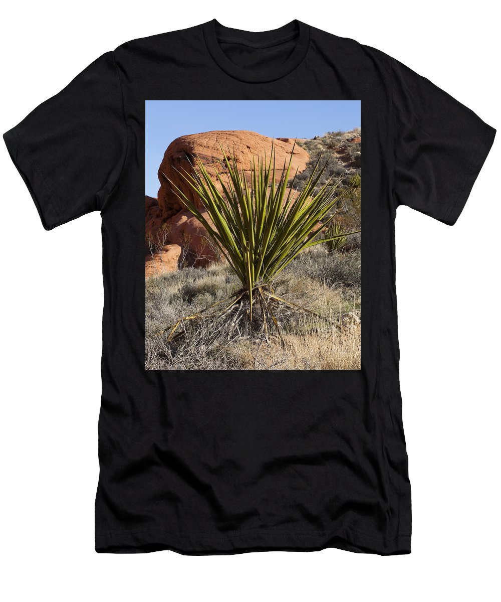 Yucca Plant Men's T-Shirt (Athletic Fit) featuring the photograph Yucca Four by Kelley King