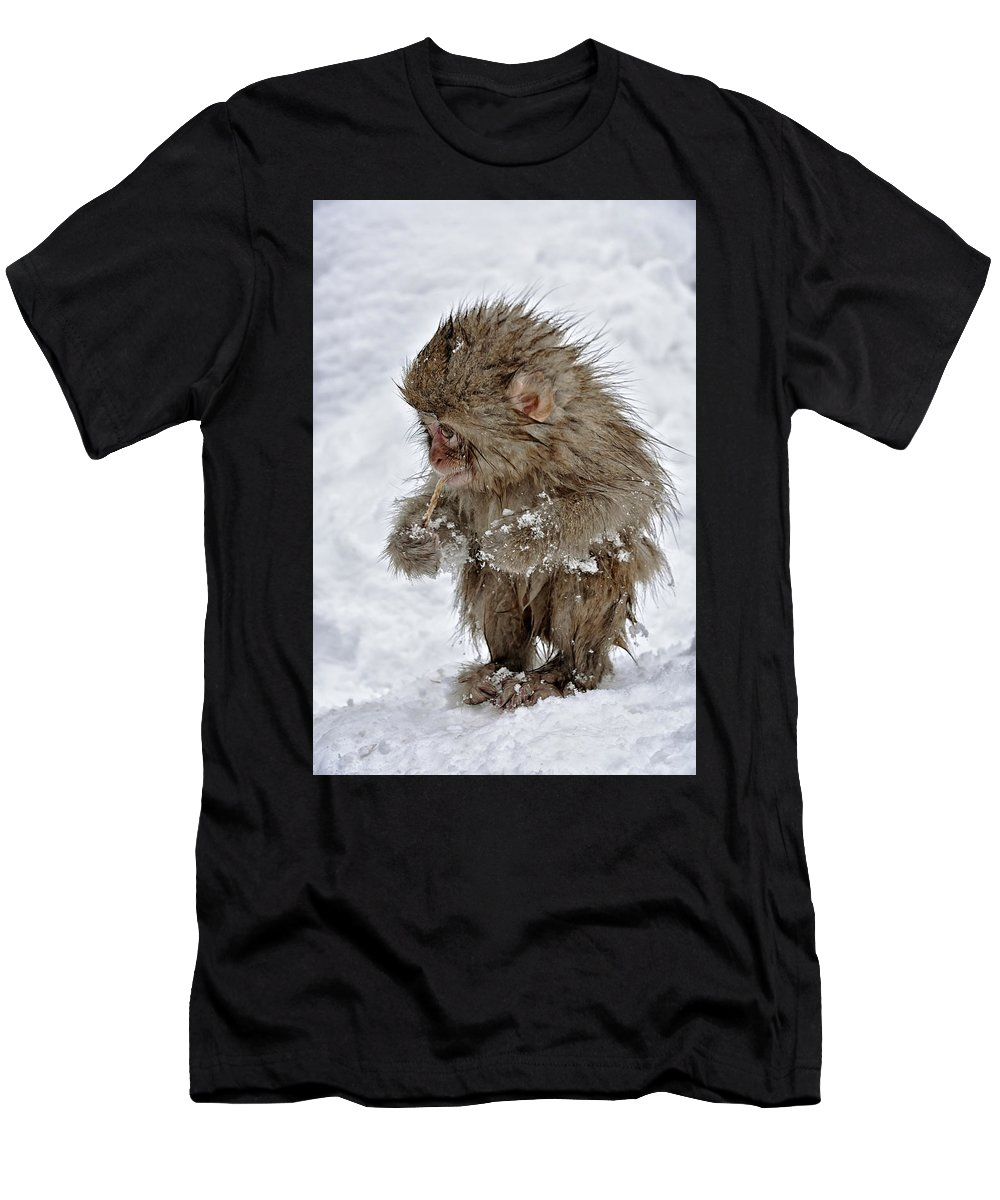 Jigokudani Men's T-Shirt (Athletic Fit) featuring the photograph Yummy? by Kuni Photography