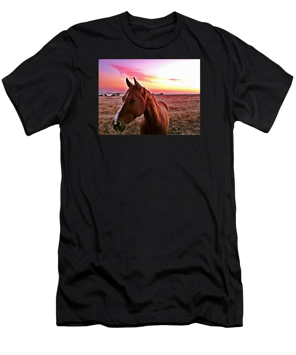 Horse Men's T-Shirt (Athletic Fit) featuring the photograph Zack During Sunset by JoJo Brown